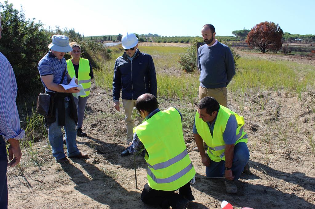 Comienzan las obras de ejecución de un nuevo tramo del carril bici que unirá Cartaya y El Rompido.